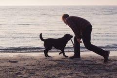 jogo do homem e do cão com vara Imagem de Stock Royalty Free