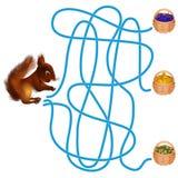 Jogo do labirinto, esquilo Imagem de Stock