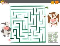 Jogo do lazer do labirinto com vacas Fotografia de Stock Royalty Free
