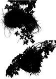 Jogo do ninho dos pássaros Imagem de Stock Royalty Free