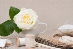 Jogo do ofício da costura e do bordado Costurando acessórios imagens de stock royalty free