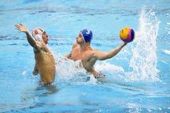 Jogo do polo aquático de Kaposvar - de Honved Fotos de Stock Royalty Free