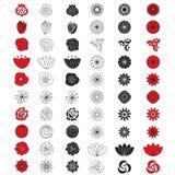 Jogo do vetor da flor Jogo floral dos botões Imagens de Stock Royalty Free
