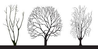 Jogo do vetor das árvores Foto de Stock