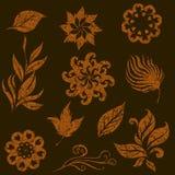 Jogo do vetor das folhas e das flores do grunge Fotografia de Stock Royalty Free