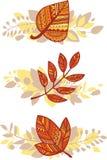 Jogo do vetor de composições das folhas de outono ilustração royalty free