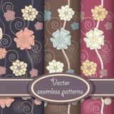 Jogo do vetor de testes padrões florais elegantes Foto de Stock