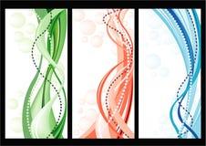 Jogo dos cartões com fundo floral do vetor Foto de Stock Royalty Free