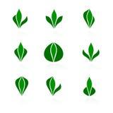 Jogo dos logotipos - planta Imagem de Stock Royalty Free