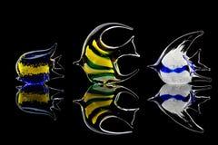 Jogo dos peixes de vidro foto de stock royalty free