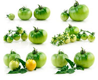 Jogo dos tomates amarelos e verdes maduros isolados Fotografia de Stock Royalty Free