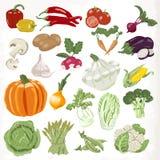 Jogo dos vegetais Ícones isolados no fundo branco ilustração royalty free