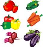 Jogo dos vegetais Foto de Stock