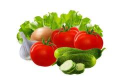 Jogo dos vegetais Os tomates, pepinos, alface, cebolas, alho isolaram o fundo branco Fotos de Stock Royalty Free