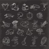 Jogo dos vegetais Vector a ilustração do esboço do desenho da mão no fundo preto ilustração stock