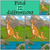 Jogo educacional: Diferenças do achado Canguru da mãe com seu bab Foto de Stock Royalty Free