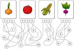 Jogo educacional do enigma Encontre as palavras escondidas Imagem de Stock
