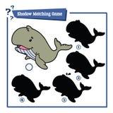 Jogo engraçado da baleia da sombra Imagens de Stock Royalty Free