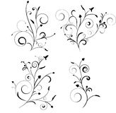 Jogo floral Fotos de Stock Royalty Free