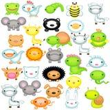 Jogo grande de animais do bebê Fotos de Stock Royalty Free