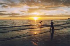 Jogo na ressaca no mar de Cortez em Puerto Imagens de Stock