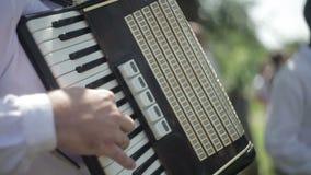 Jogo no acordeão vídeos de arquivo