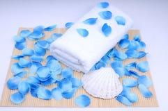 Jogo, toalha e conch dos termas Imagem de Stock