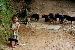 Jogo vietnamiano feliz das crianças Imagem de Stock Royalty Free