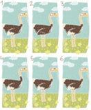 Jogo do Visual da avestruz ilustração stock