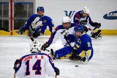 Jogos 2010 do inverno de Paralympic Fotos de Stock Royalty Free