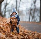 Jogos da menina com as folhas Fotografia de Stock Royalty Free