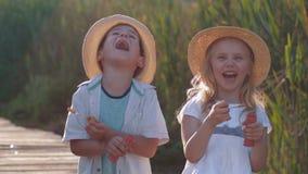 Jogos das crianças, crianças bonitas engraçadas menino e menina em chapéus de palha para fundir bolhas e rir no ar livre vídeos de arquivo