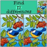 Jogos das crianças: Diferenças do achado Titmouse pequeno bonito Foto de Stock