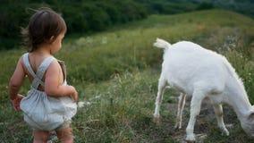 Jogos do bebê com uma cabra filme