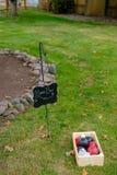 Jogos do gramado do copo de água foto de stock royalty free