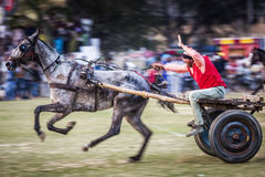 Jogos rurais de Kila raipur - 2017 Imagens de Stock Royalty Free