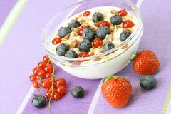 Jogurt and Fresh fruits Stock Image