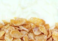 Jogurt i zboże Obraz Royalty Free