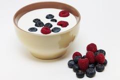 Jogurt mit Beeren lizenzfreies stockfoto