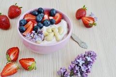 Jogurt mit Beeren und Acajoubaum, gesundes Frühstück Lizenzfreie Stockbilder