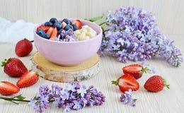 Jogurt mit Beeren und Acajoubaum, gesundes Frühstück Lizenzfreie Stockfotos