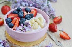 Jogurt mit Beeren und Acajoubaum, gesundes Frühstück Stockbilder