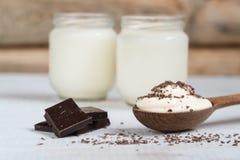 Jogurt mit Schokoladenjoghurthaus Biokost Corn Flakes stockfoto