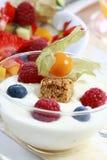 jogurt owoców Zdjęcie Stock