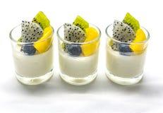 Jogurt penna Cotta mit verschiedenen Früchten Lizenzfreies Stockfoto