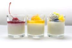 Jogurt penna Cotta mit verschiedenen Früchten Stockbild