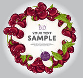 Jogurt-Spritzen auf Cherry Wreath, Vektor Stockfotos