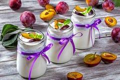 Jogurt z śliwkami i mennicą Obraz Royalty Free