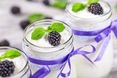 Jogurt z czernicami, selekcyjna ostrość, zbliżenie Obraz Royalty Free