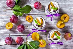 Jogurt z dojrzałymi śliwkami i mennicą w szkło słojach dekorował z Zdjęcie Royalty Free
